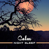 Calm Night Sleep – Music for Night Relaxation, Sleep Well, Inner Calmness, Sounds to Rest de Ambient Music Therapy