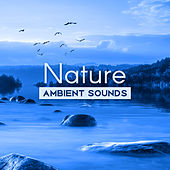Nature Ambient Sounds – Calm Sounds to Relax, Nature Relaxation, New Age Music to Rest, Healing Sounds, Therapy with Music de Healing Sounds for Deep Sleep and Relaxation