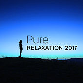 Pure Relaxation 2017 – New Age Music, Deep Relaxation, Meditation, Peaceful Sounds of Nature to Calm Down, Relief Stress de Zen Meditation and Natural White Noise and New Age Deep Massage