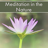 Meditation in the Nature – New Age Music 2017 for Meditation, Sounds of Nature, Relaxing Music, Deep Meditation, de Nature Sound Collection