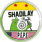 Shadilay (Instrumental) by Pepe