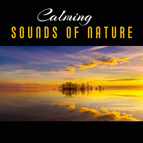 Calming Sounds of Nature – Soft Sounds to Relax, Nature Rest, New Age Music, Spa Massage, Inner Calmness by Nature Sound Series