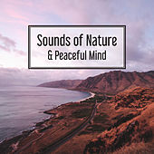 Sounds of Nature & Peaceful Mind – Soft Music to Rest, Asian Zen, Relief, Calm Down, Zen, Calming Melodies for Listening de Relaxing Music Sounds of Nature Relaxation