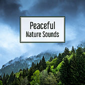 Peaceful Nature Sounds – Relax Yourself, New Age Music, Sounds for Peaceful Mind, Easy Listening by Nature Tribe