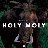 Holy Moly von Tinie Tempah