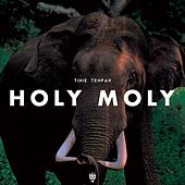Holy Moly de Tinie Tempah