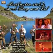 Musikanten zieh'n durch Berg und Tal by Various Artists