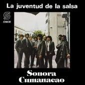La Juventud de la Salsa de Sonora Cumanacao