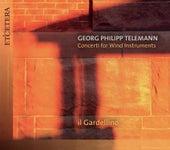 Telemann: Concerti for Wind Instruments by Il Gardellino