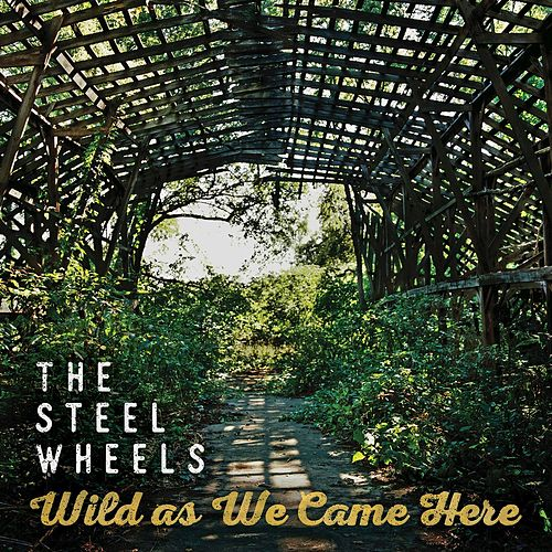 Broken Mandolin by The Steel Wheels