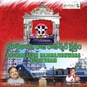 Bhukailasam Rajarajeshwara Kshethram de Various Artists