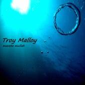 Maveta Mullah di Troy Malloy