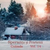 Colinde, Vol. 14 by Speranța și prietenii