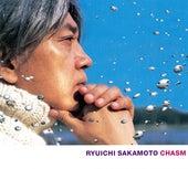Chasm von Various Artists