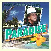 Living in Paradise de Jesse Colin Young