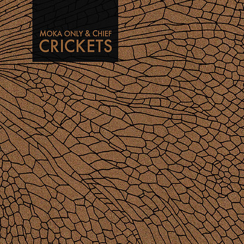 Crickets by Sene