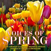 Voices of Spring: The Greatest Classical Waltzes & Dances Inspired by Nature & Springtime by Various Artists