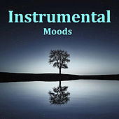 Instrumental Moods von Various Artists