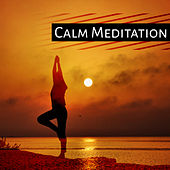 Calm Meditation – Training Yoga, Peaceful Music, Relaxation, Nature Sounds for Concentration, Stress Relief, Meditate by Yoga Music