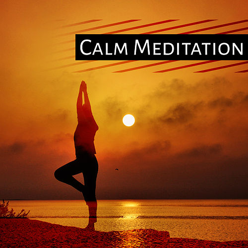 Calm Meditation – Training Yoga, Peaceful Music, Relaxation, Nature Sounds for Concentration, Stress Relief, Meditate di Yoga Music
