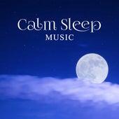 Calm Sleep Music – Relaxing Music for Sleep, Fall Asleep, Peaceful New Age, Deep Sleep, Healing Sounds of Nature by Sleep Sound Library