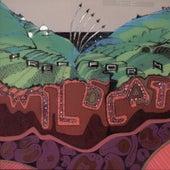 Wildcat by Freeform