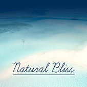 Natural Bliss – Calming New Age, Music for Rest, Relax After Work, Pure Relaxation de Zen Meditation and Natural White Noise and New Age Deep Massage