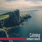 Calming Ambient Nature – Stress Relief, Nature Relaxation, Sounds to Calm Mind, Healing Waves de Ambient Music Therapy