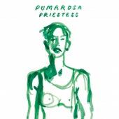 Priestess (Mr Dan Edit) by Pumarosa