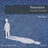 Triangle Knights by Namatjira
