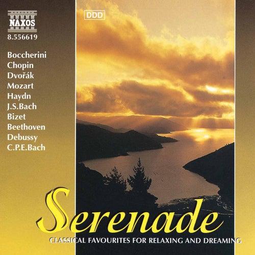 Serenade by Various Artists