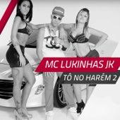 Tô no Harém 2 de MC Lukinhas JK