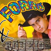 Forró e Rodeio by Various Artists