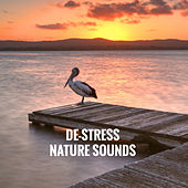 De-Stress Nature Sounds by Various Artists