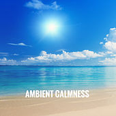 Ambient Calmness by Various Artists