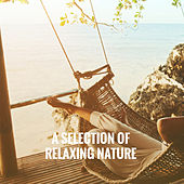 A Selection of Relaxing Nature by Various Artists