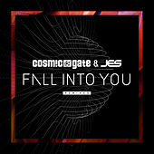 Fall Into You (Remixes) von Cosmic Gate