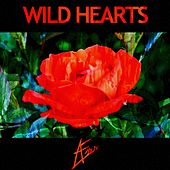 Wild Hearts by Æves