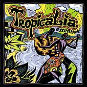 Tropicalia Essentials by Various Artists