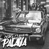 Palava (feat. Ekeno) von Nsg