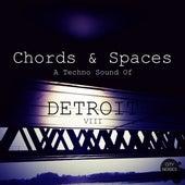Chords & Spaces VIII - A Techno Sound of Detroit de Various Artists