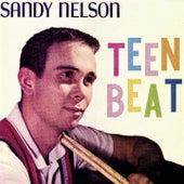 Teen Beat by Sandy Nelson