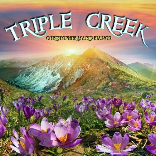 Triple Creek by Christopher Mario Bianco