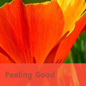 Feeling Good von Various Artists