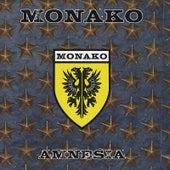 Amnesia by Monako