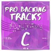 Pro Backing Tracks C, Vol. 22 by Pop Music Workshop