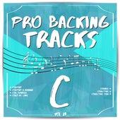 Pro Backing Tracks C, Vol. 23 by Pop Music Workshop