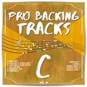 Pro Backing Tracks C, Vol. 24 by Pop Music Workshop