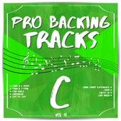 Pro Backing Tracks C, Vol. 18 by Pop Music Workshop