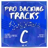 Pro Backing Tracks C, Vol. 19 by Pop Music Workshop